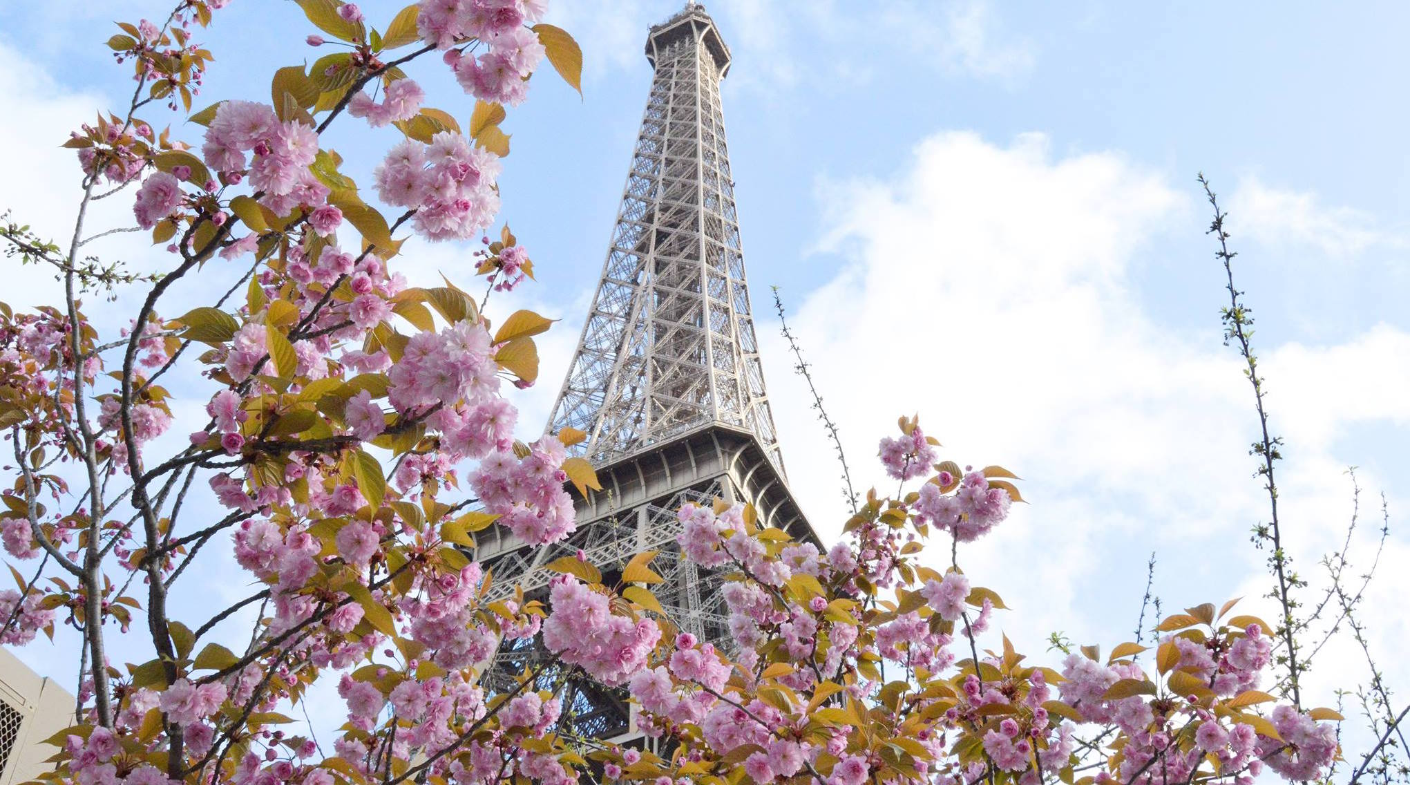 ONE DAY IN PARIS WITH «L'AMUSEE»